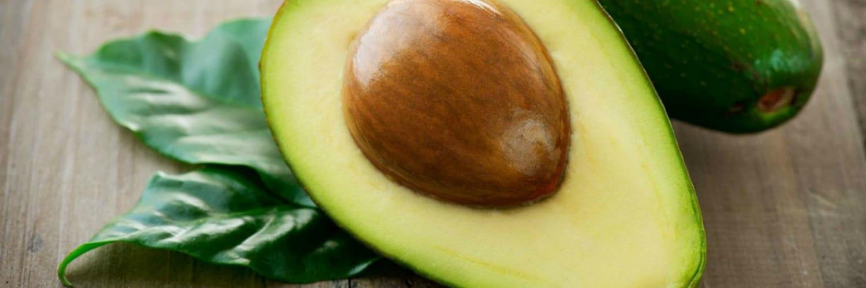 taboola avocados mexico