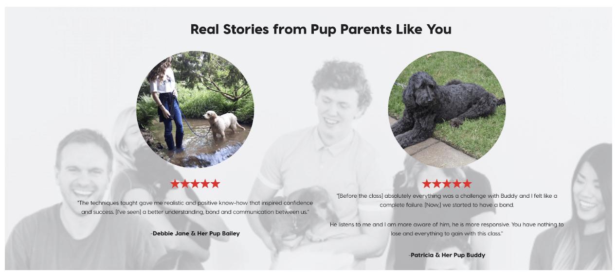 Testimonials on Pupford's website