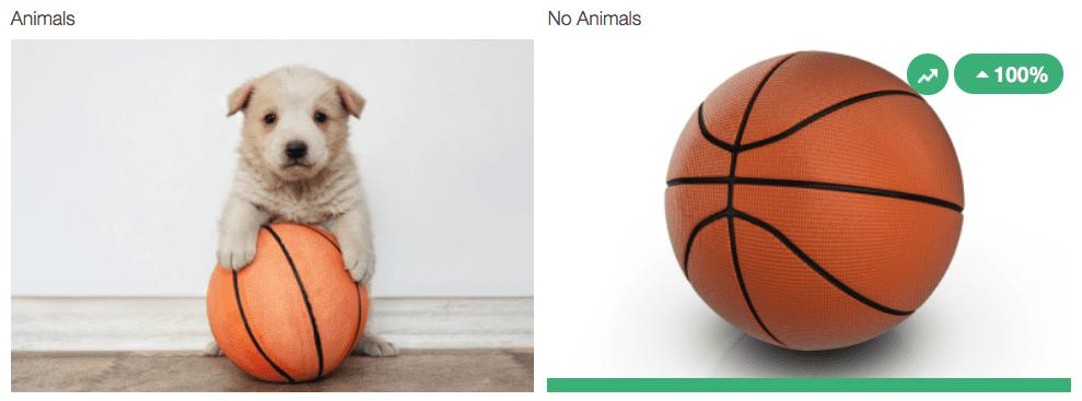 sports holiday marketing (4)